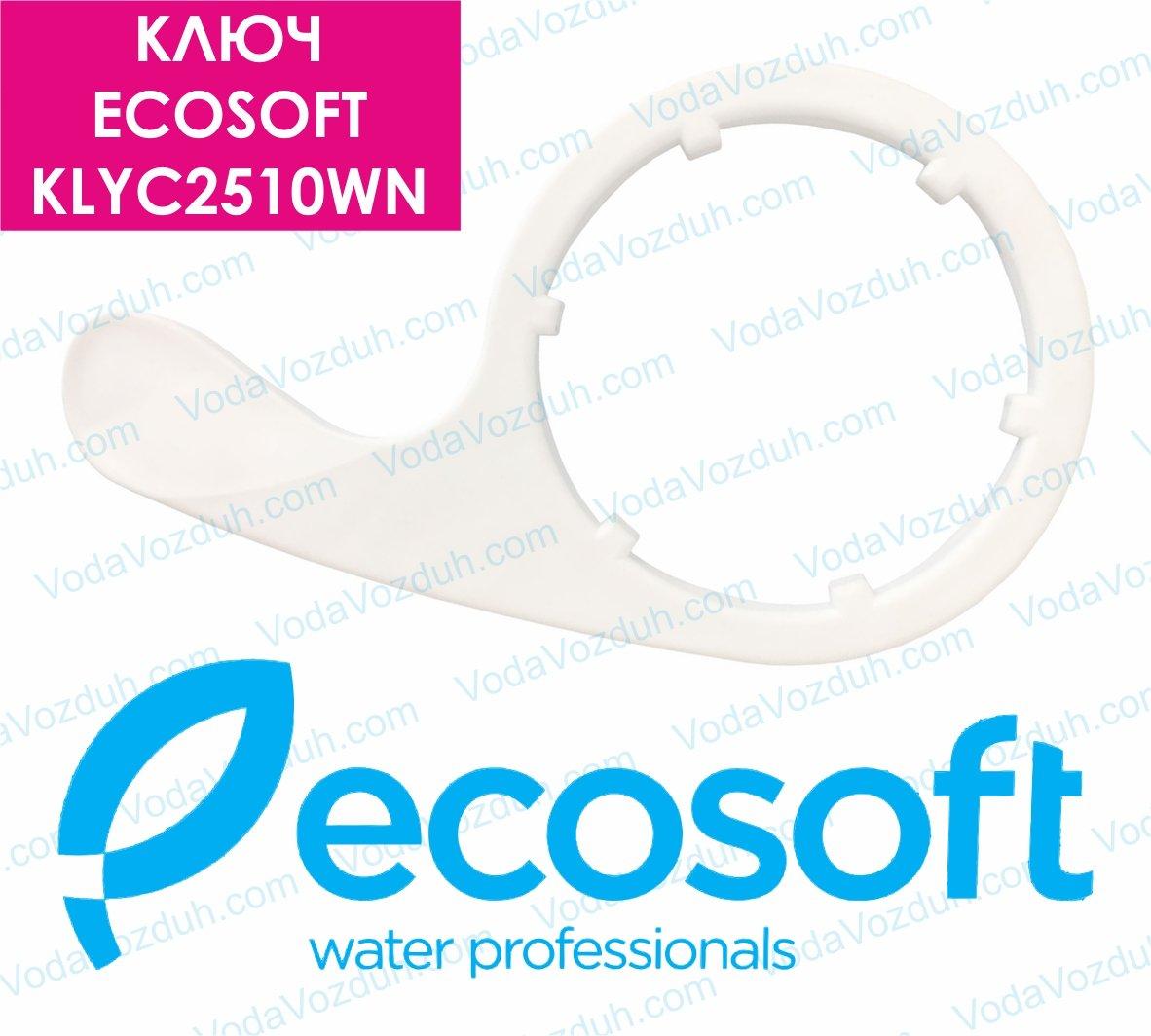 Ecosoft KLYC2510WN ключ